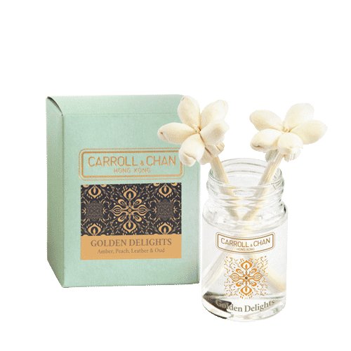 Golden Delights Mini Reed Diffuser