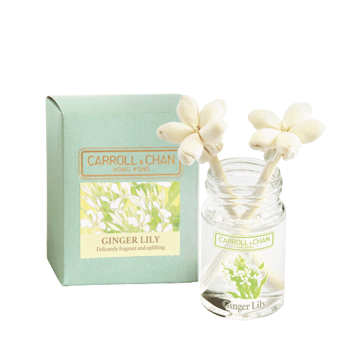 Ginger Lily mini reed diffuser