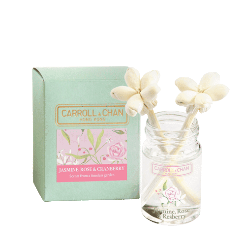 Jasmine, Rose, Cranberry mini diffuser