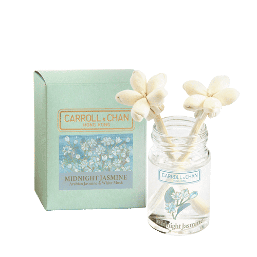 Midnight Jasmine mini reed diffuser
