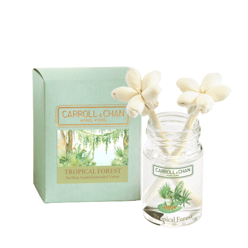 tropical Forest mini diffuser
