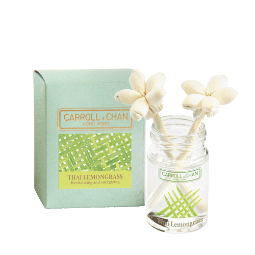 Lemongrass 20ml Mini Reed Diffuser