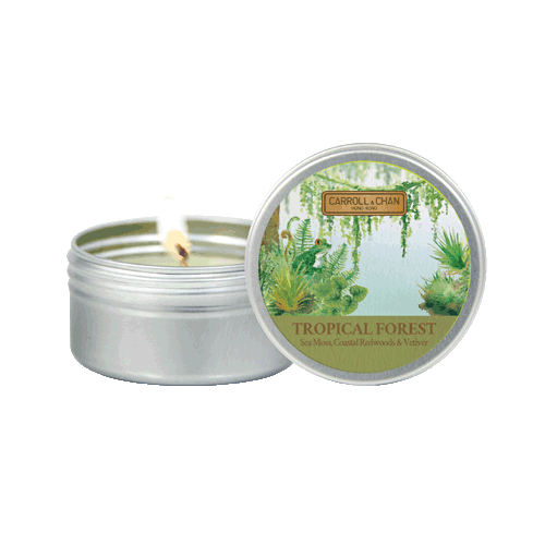 Tropical Forest Mini Tin Candle