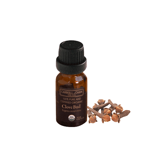 Essential Oil, Clove organic