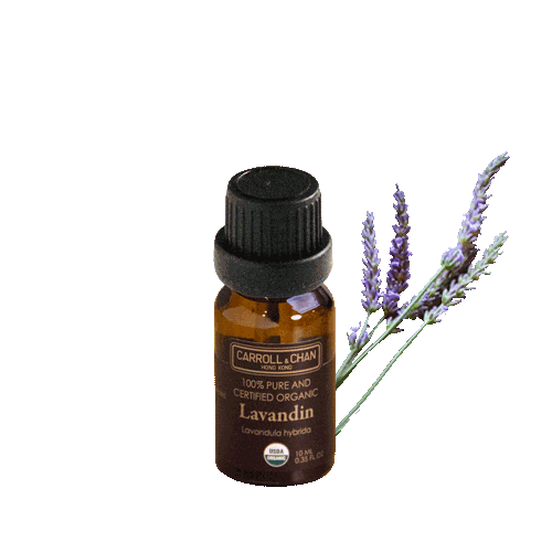Essential Oil, Lavin organic