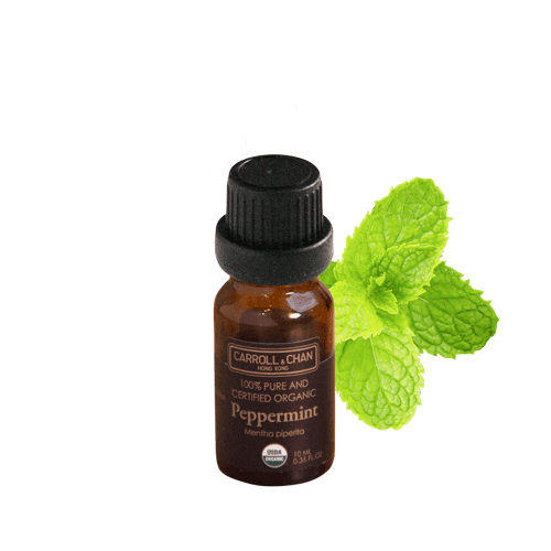 Essential Oil, Peppermint organic