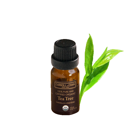 Essential Oil, Tea tree organic