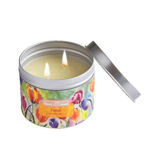 Tulips Scented Tin Candle